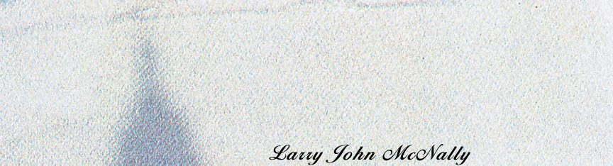 Larry John McNally